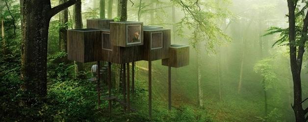 Resultados del Concurso Triumph Architectural Treehouse Award 2014